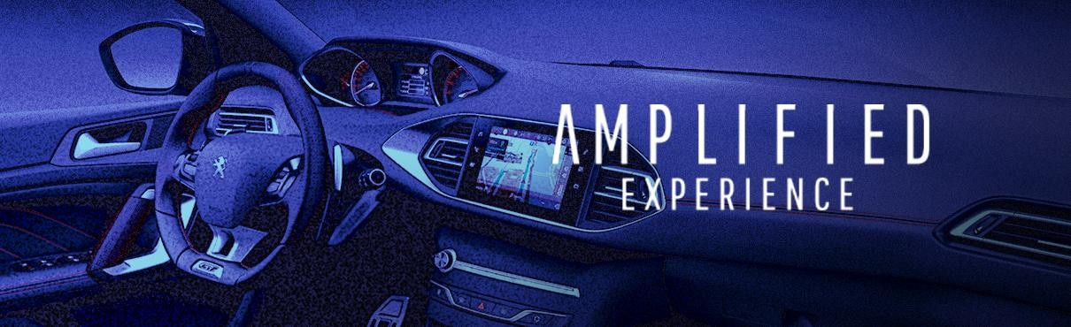 308 Amplified Experience