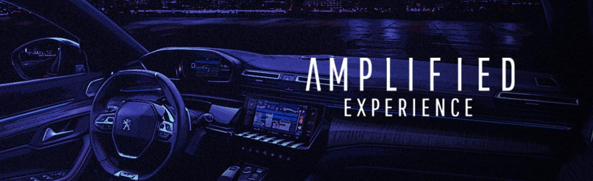 508 Amplified Experience